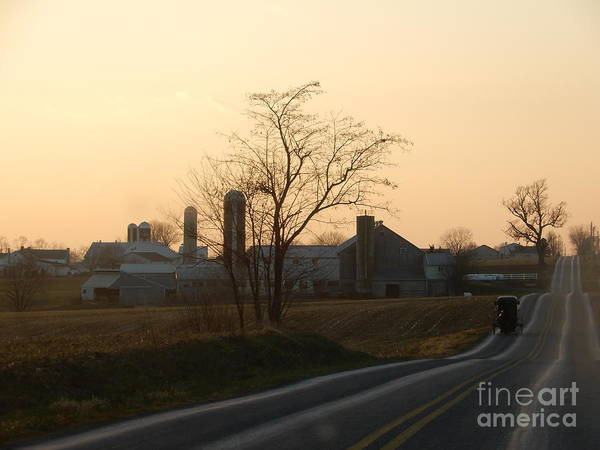 Photograph - Winter Evening Buggy Ride In Amish Country by Christine Clark