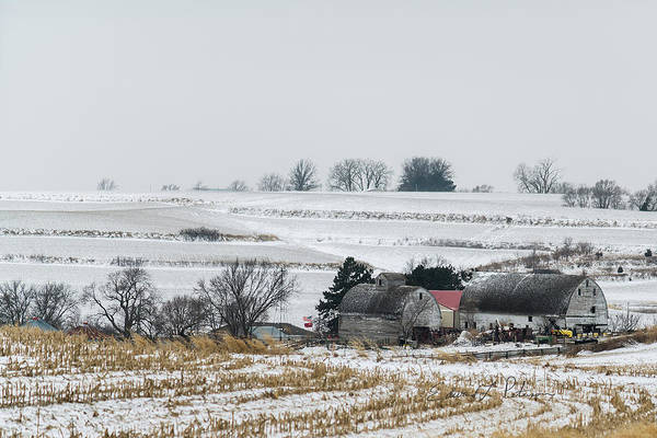 Photograph - Winter Farm by Edward Peterson