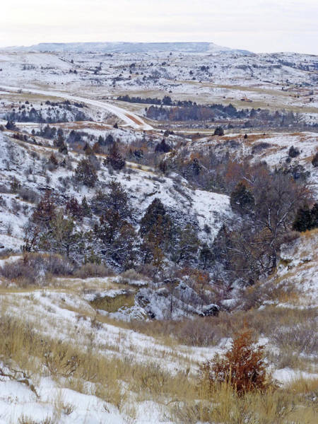 Photograph - Winter From East River Road by Cris Fulton