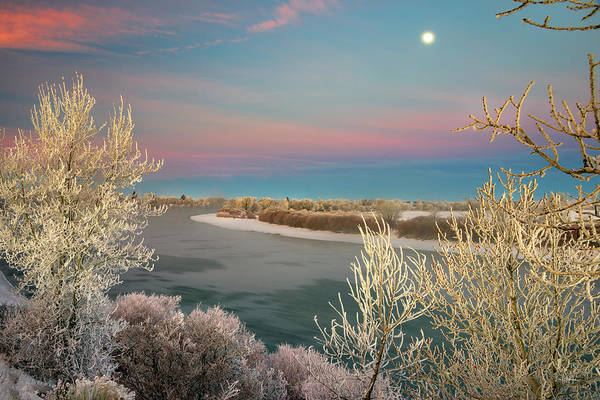 Photograph - Winter Frost And Color by Leland D Howard