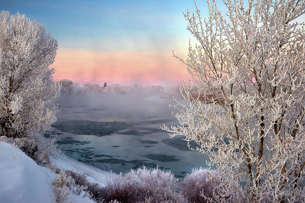 Photograph - Winter Frost And Mist by Leland D Howard