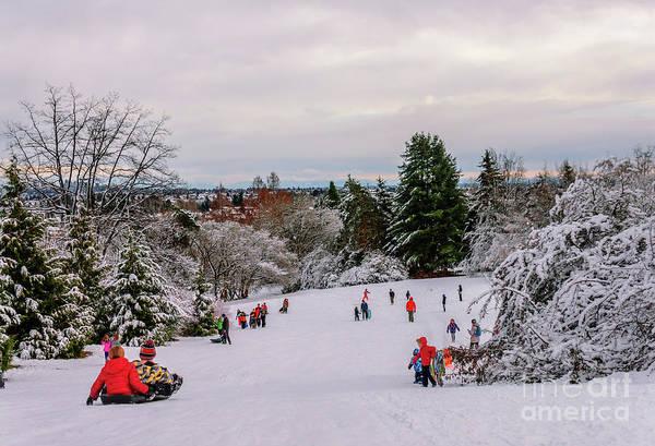 Wall Art - Photograph - Winter Fun In The Park by Viktor Birkus