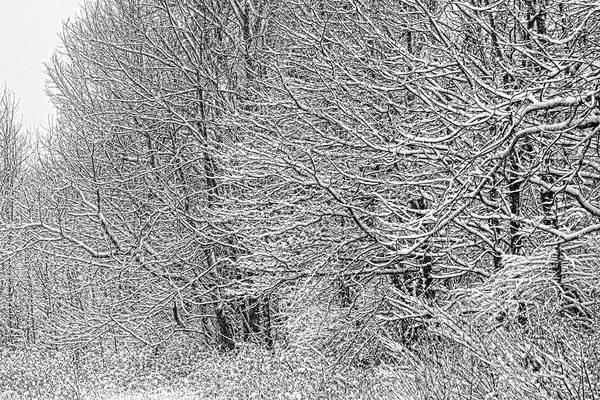 Photograph - Winter Gap by Dawn J Benko