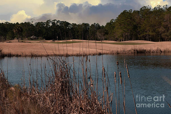 Photograph - Winter Golfing - Rivertowne Country Club by Dale Powell