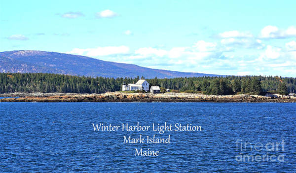 Photograph - Winter Harbor by Patti Whitten