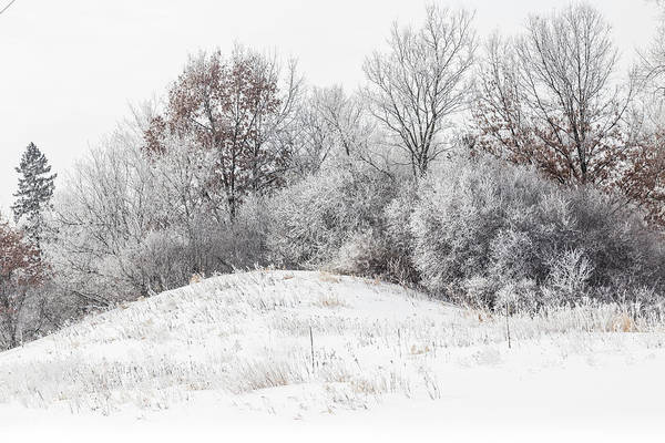 Photograph - Winter Hills Frosty Snow by Patti Deters