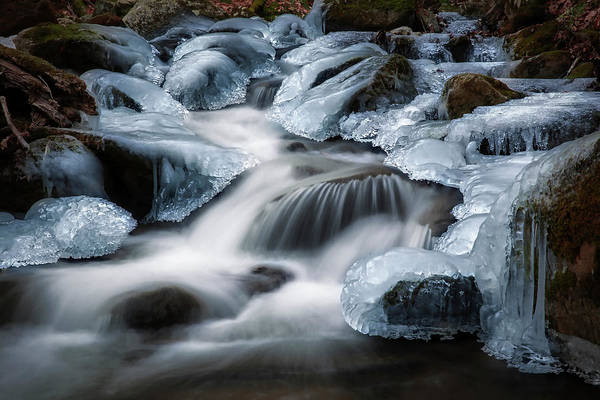 Photograph - Winter Ice by Bill Wakeley