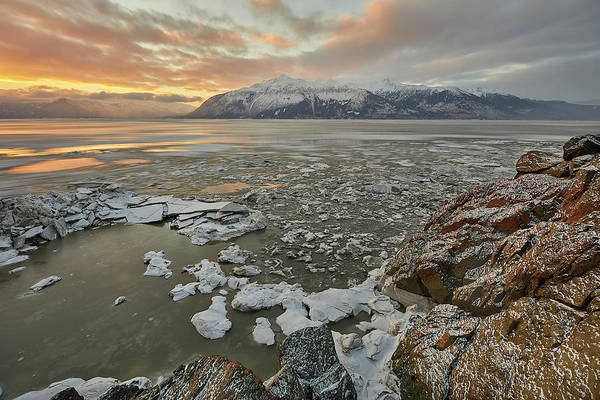 Wall Art - Photograph - Winter Ice On Turnagain Arm by Tim Grams
