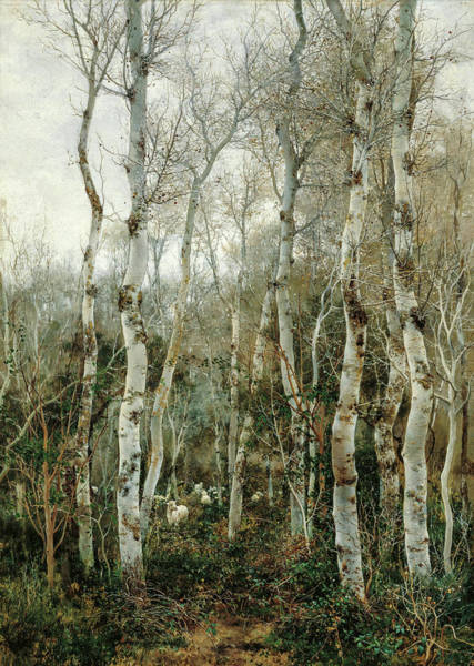 Wall Art - Painting - Winter In Andalusia, Poplars And Sheep At Alcala De Guadaira, 1880 by Emilio Sanchez-Perrier