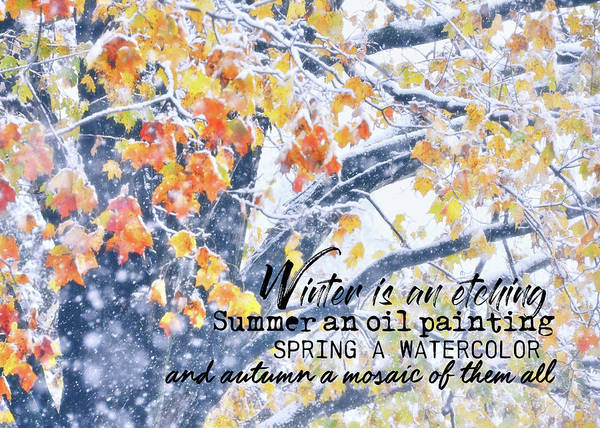 Winter In Autumn Quote Art Print by JAMART Photography