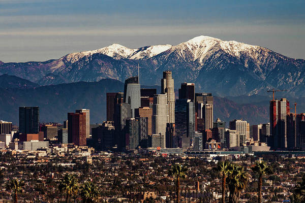Wall Art - Photograph - Winter In Los Angeles by April Reppucci