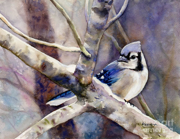 Wall Art - Painting - Winter Jay by Hailey E Herrera