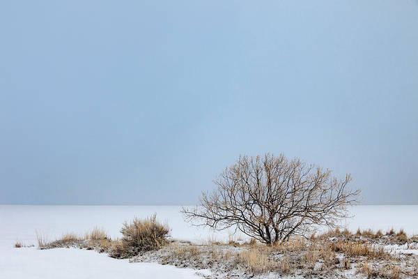 Lakeside Wall Art - Photograph - Winter Lakeside by Todd Klassy