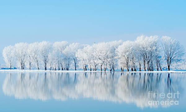 Seasonal Wall Art - Photograph - Winter Landscape by Aaltair