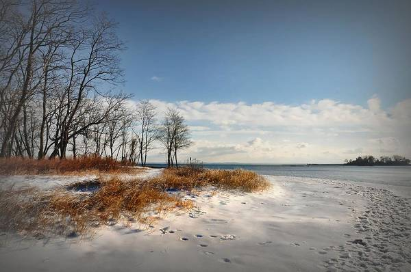 Stamford Photograph - Winter Landscape by Diana Lee Angstadt