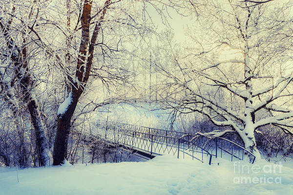 December Wall Art - Photograph - Winter Landscape In Vintage Tones - by Marina Zezelina