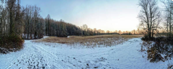 Kingsville Photograph - Winter Landscape Pano by Brian Wallace