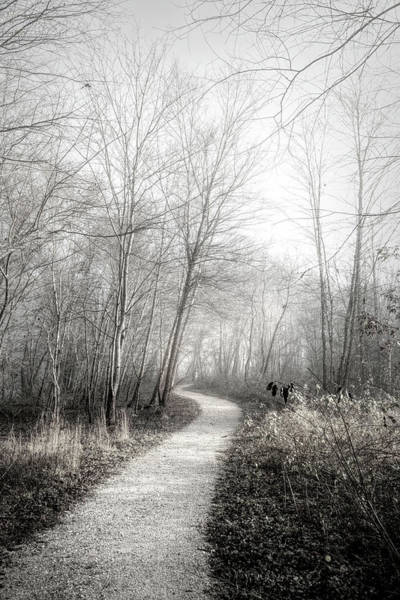 Photograph - Winter Light In Black And White by Debra and Dave Vanderlaan