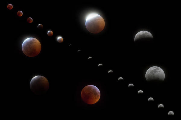 Wall Art - Photograph - Winter Moon Phases by Betsy Knapp