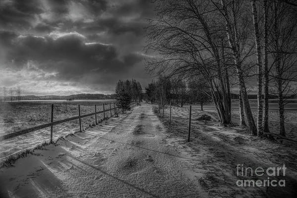 Wall Art - Photograph - Winter Morning Light 7 by Veikko Suikkanen