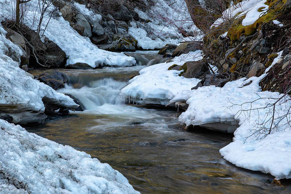 Photograph - Winter Mountain Creek by Michael Chatt