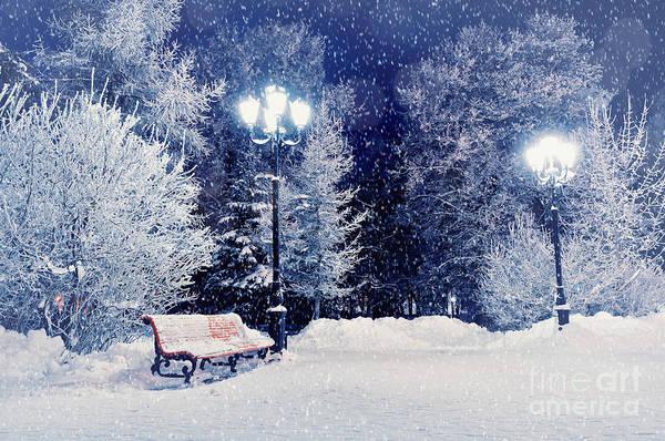 Park Bench Wall Art - Photograph - Winter Night Landscape Scene Of Snow by Marina Zezelina