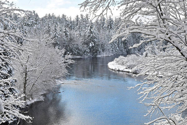 Manistee National Forest Wall Art - Photograph - Winter On The Ausable 1058 by Michael Peychich