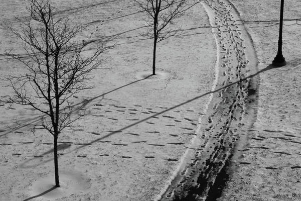 Photograph - Winter Pathways by John Meader