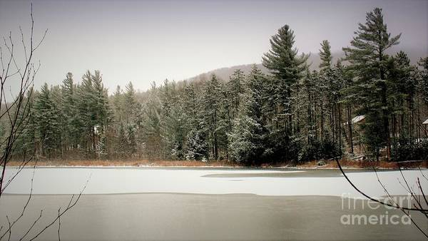 Photograph - Winter Pond by Patti Whitten
