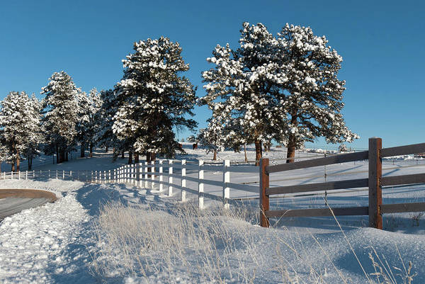 Photograph - Winter Ranch Landscape In The Colorado Foothills by Cascade Colors