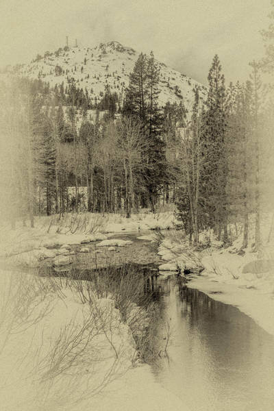 Photograph - Winter Reflection by Jack Peterson