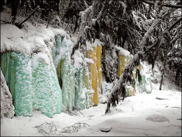 Photograph - Winter Revelation by Wayne King