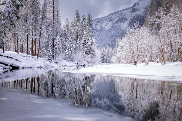 Wall Art - Photograph - Winter Riverside Reflections, Yosemite by Vincent James