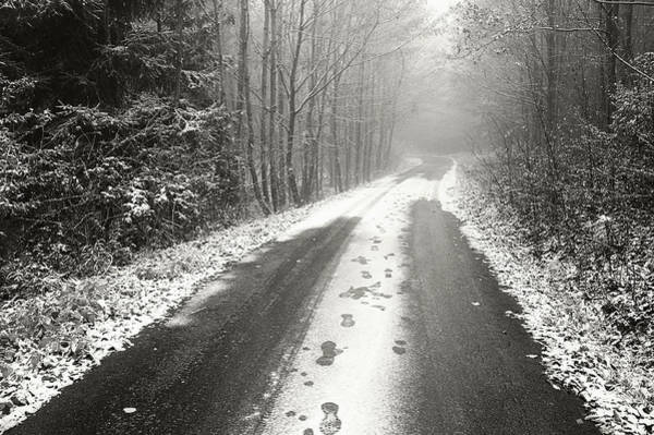 Photograph - Winter Road Through Misty Woods by Jenny Rainbow