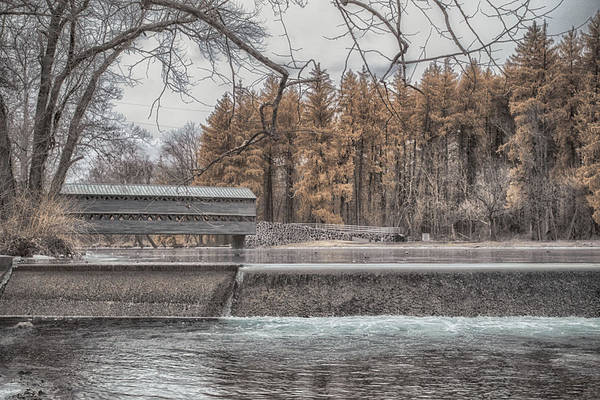 Photograph - Winter Sachs by Dan Urban
