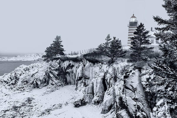 Photograph - Winter Sentinel In Down East Maine by Marty Saccone