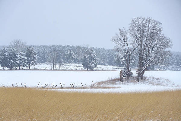 Wall Art - Photograph - Winter Serenity On The Battlefield by Brandy Herren