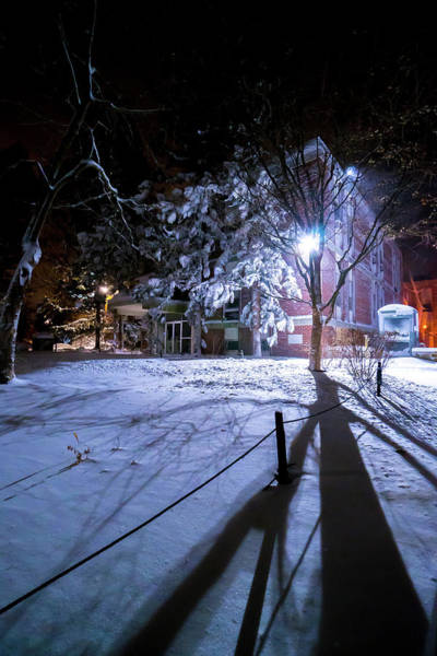 Photograph - Winter Shadows by Christopher Brown