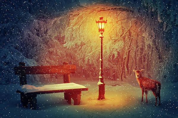 Park Bench Digital Art - Winter Silence by Psycho Shadow