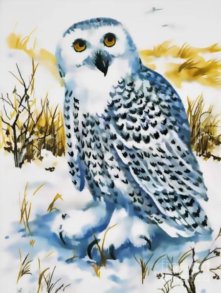 Digital Art - Winter Snowy Owl by D Hackett