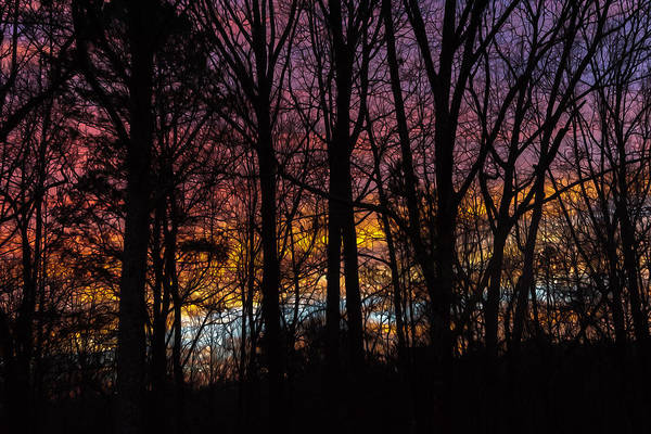 Photograph - Winter Sunrise by Keith Smith