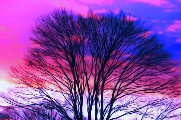 Photograph - Winter Sunset Abstract by Karen Silvestri