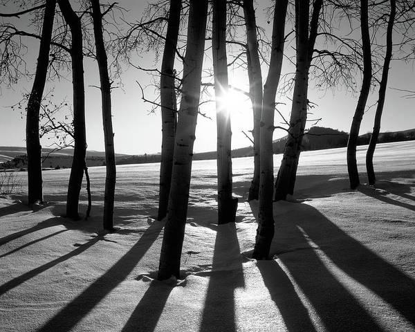 Photograph - Winter Sunset by Leland D Howard