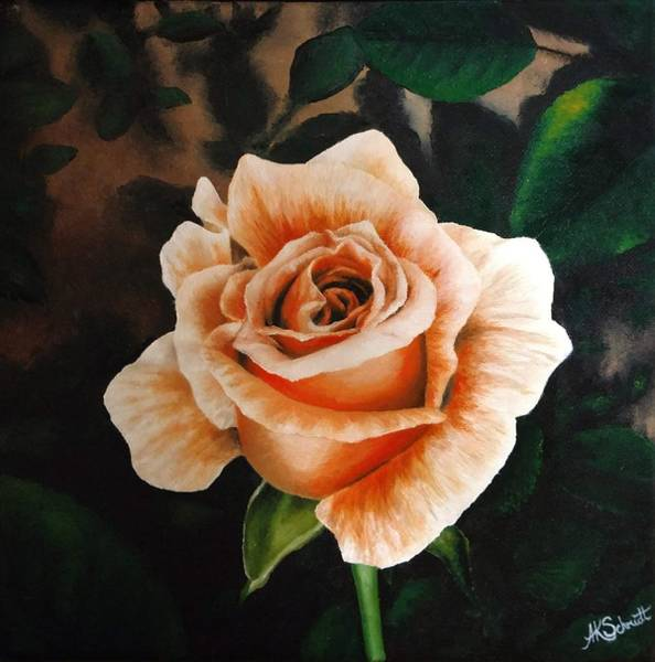 Painting - Winter Sunset Rose Bloom - Painting by Ashley Koebrick Schmidt