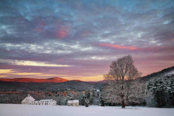 Photograph - Winter Takes Over by Darylann Leonard Photography