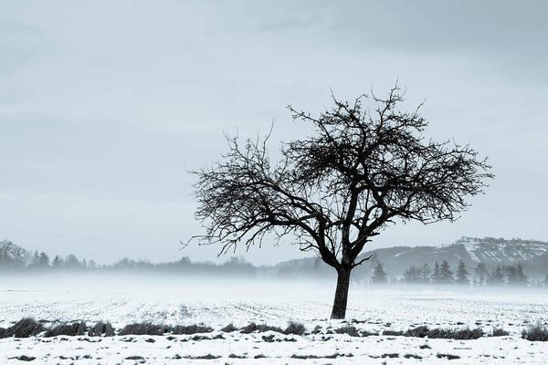Dreary Photograph - Winter by Thorsten Scheuermann