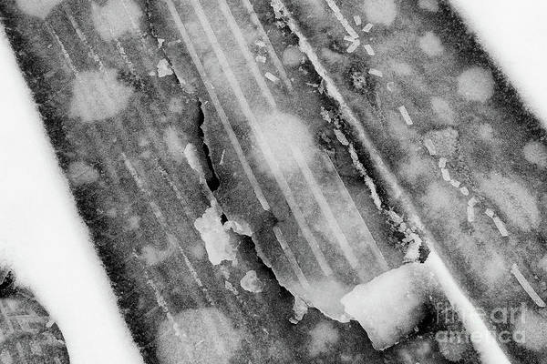 Photograph - Winter Tracks II by Karen Adams