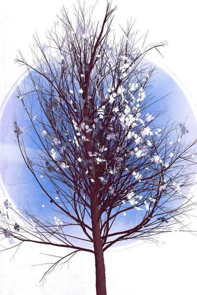 Flowering Trees Digital Art - Winter Tree At First Frost by Debra and Dave Vanderlaan
