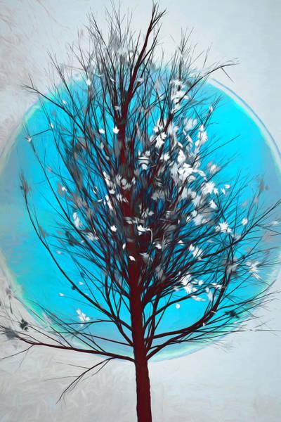 Carribean Islands Digital Art - Winter Tree In Beachy Blues by Debra and Dave Vanderlaan