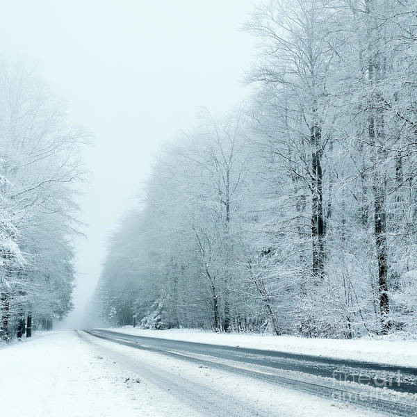 Wall Art - Photograph - Winter by Trendobjects